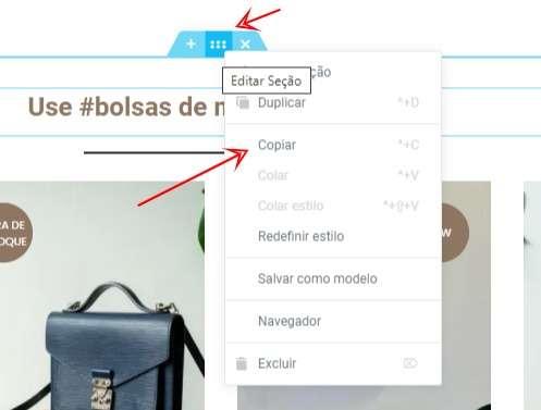 WordPress como copiar e colar um bloco ou seção